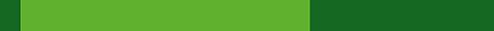 THE FOODVENIENCE COMPANY Logo